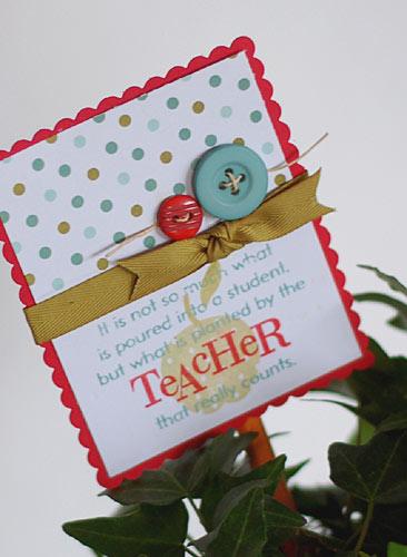 Teacher Plant-2
