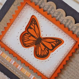 ButterflyBirthday3