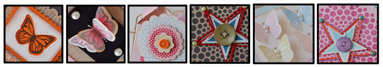 Dotspot-butterfly-blog-head