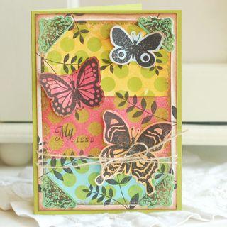 My-Friend-Butterfly