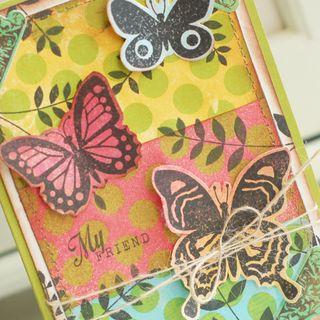 My-Friend-Butterfly-dtl