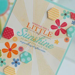 Little-Bit-of-Sunshine-dtl