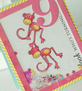 Monkey-9-dtl2