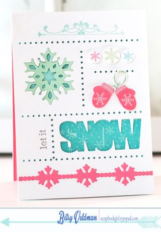Snow-Sampler
