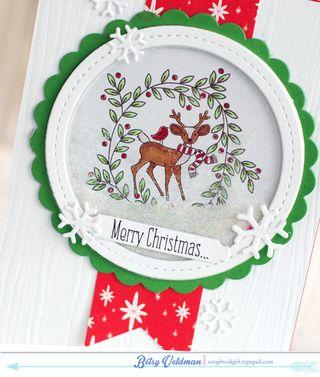 Santa's-Sleigh-Shaker-dtl