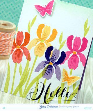 Hello-Iris-dtl