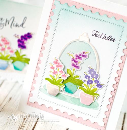 Cloche-Orchids3