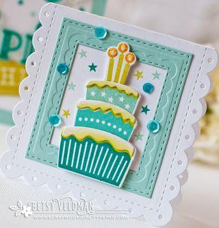 Cake-enclosure-dtl