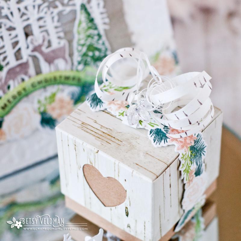 Birch-box2