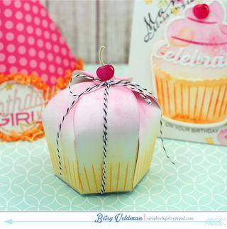 Birthday-cupcake-box