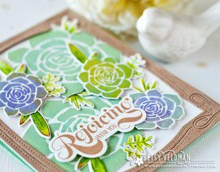 Succulents-dtl