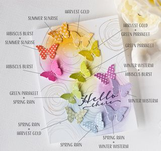Butterfly-color-chart