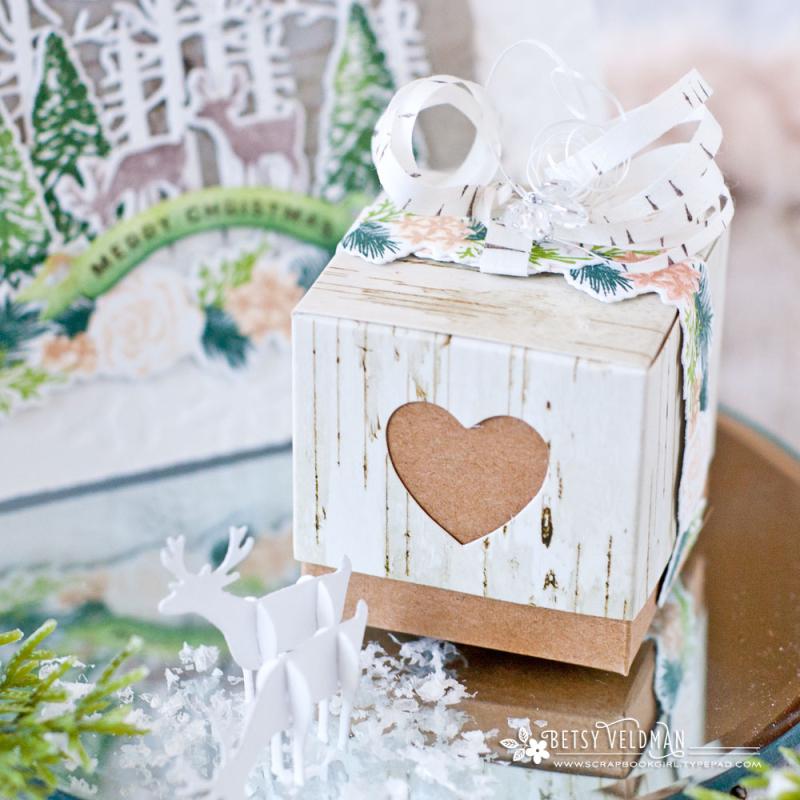 Birch-box1