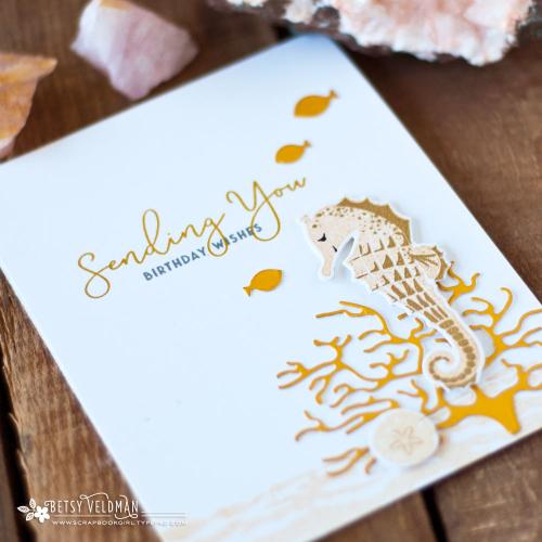 Sentiment_Staples_Sending_Salt_Air_Birthday_1