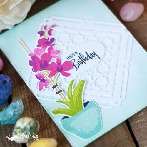 Orchid_Expressions_Shape_Shifters_Birthday_3
