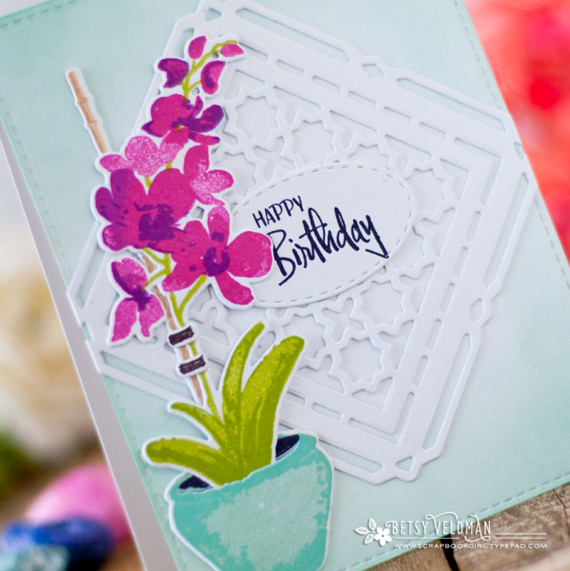 Orchid_Expressions_Shape_Shifters_Birthday_2